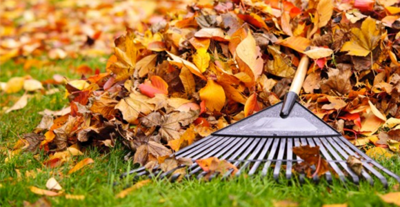 garden maintenance tips preparing your garden for winter - Garden Mainenance